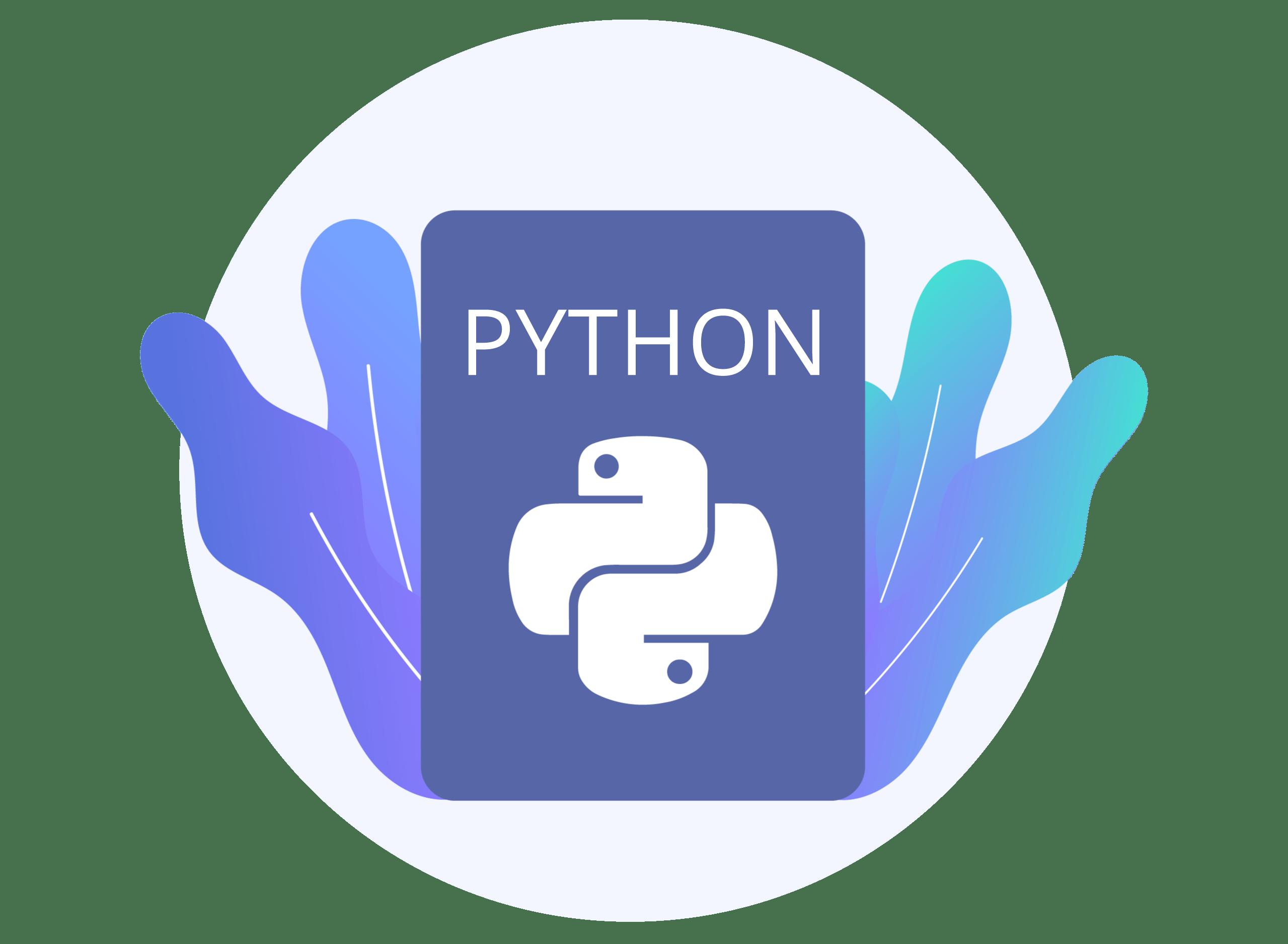 python security training